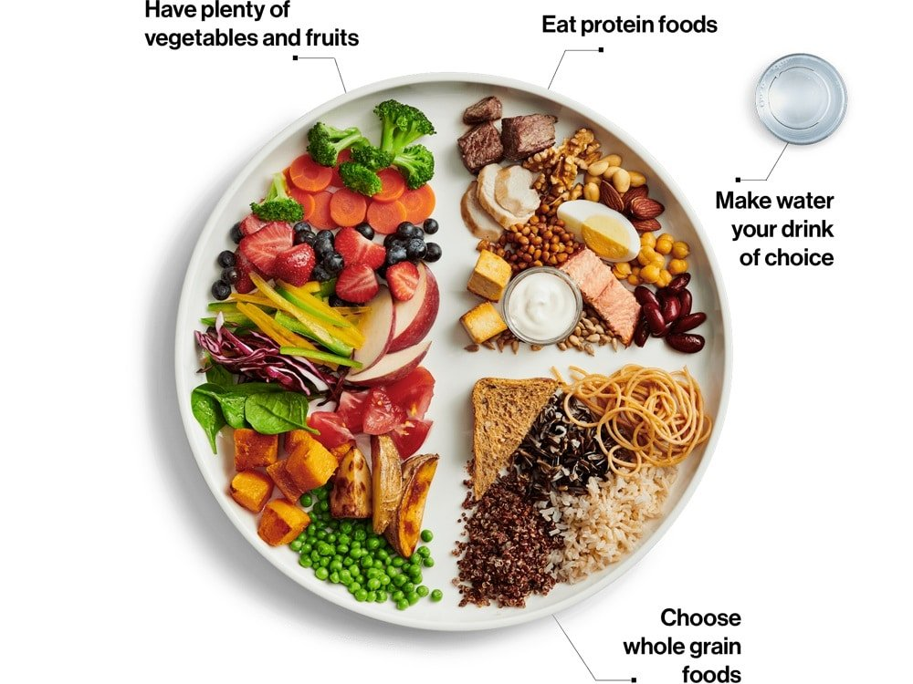 Canadas food guide or food plate