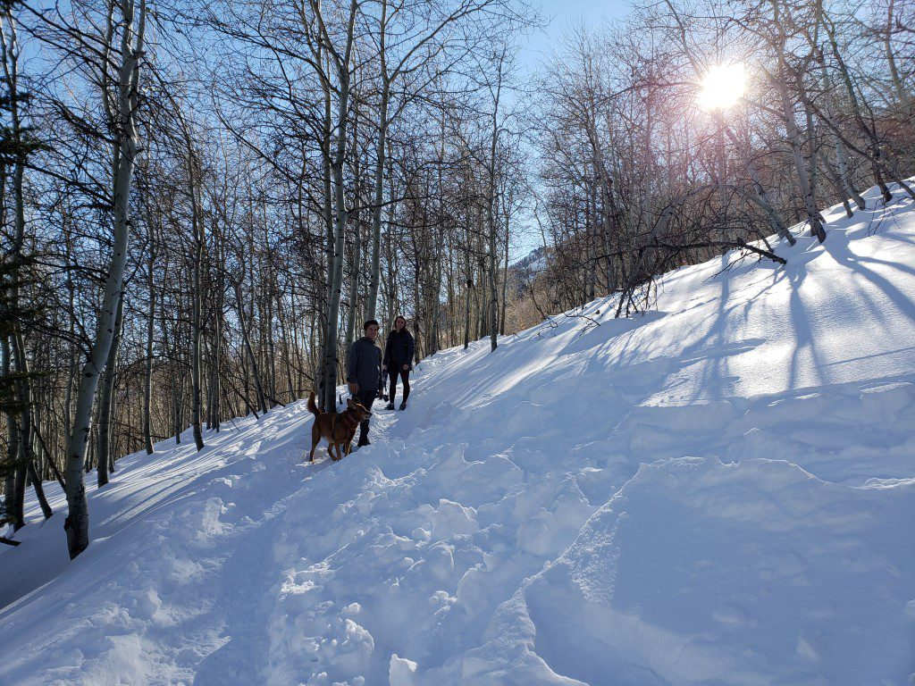 Stewart falls hike winter