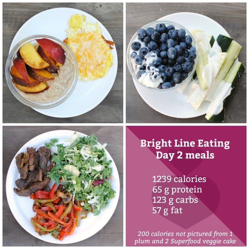 Day 2 bright line eating meal ideas