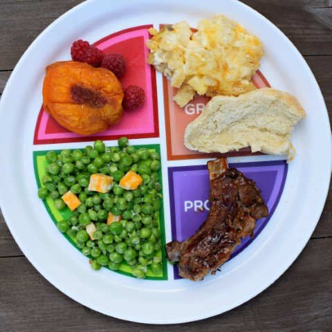 choose myplate portion control plate dinner