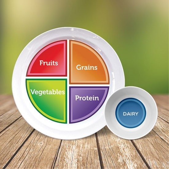 myplate plate with dairy bowl