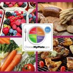 food groups represented by choose myplate