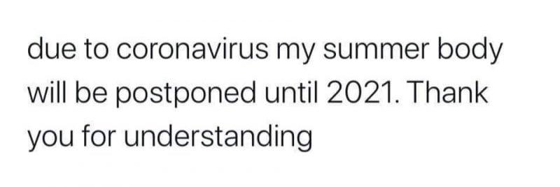 my summer body will be postponed meme