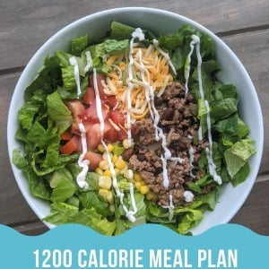 1200 calorie meal plan