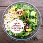 Make Ahead Apple Almond Poppyseed Salad