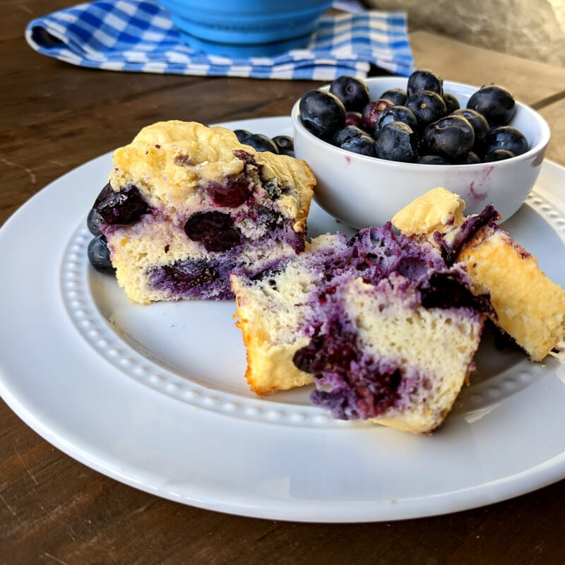 Blueberry Cake with Blueberries in a Cup 1200x1200
